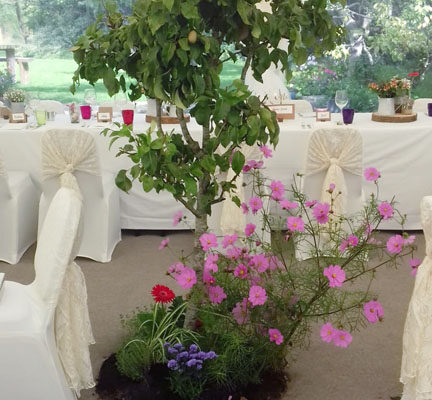 wedding marquees in Wiltshire